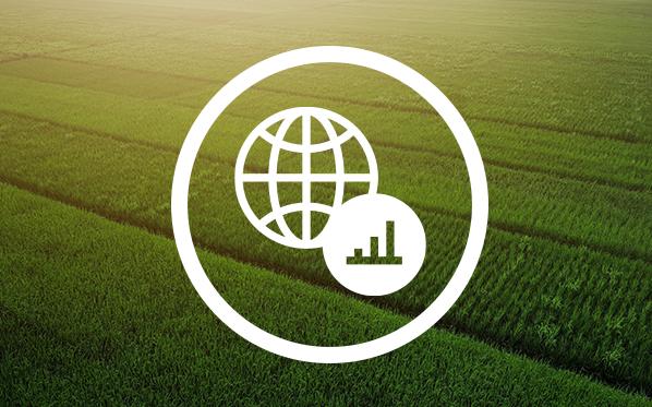 Launch & Scale a Carbon Program